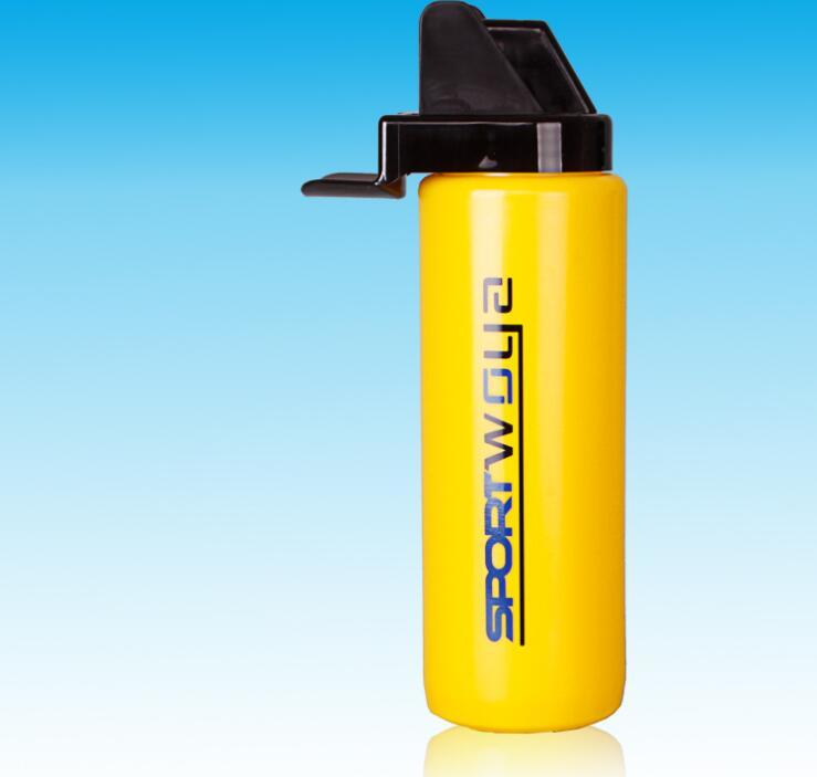 BPA Free Sport Water Bottle with Logo Printing, Promotion Gift Bottle, Sport Water Bottle, PE Water Bottle