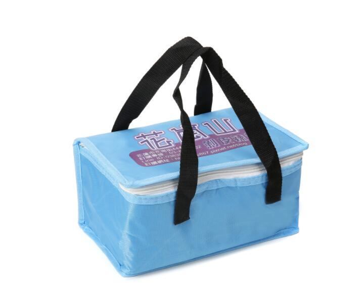Eco Ice Cool Bag, Insulated Cooling Bag, Picnic Lunch Cooler Bag